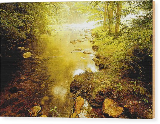 Mountain Stream Summer Wood Print