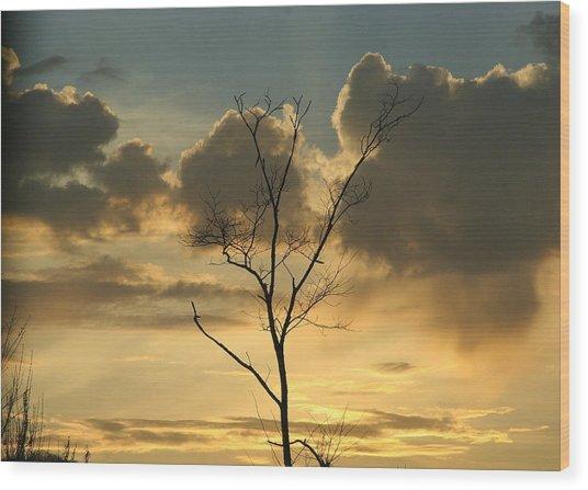 Mountain Sunset Four Wood Print