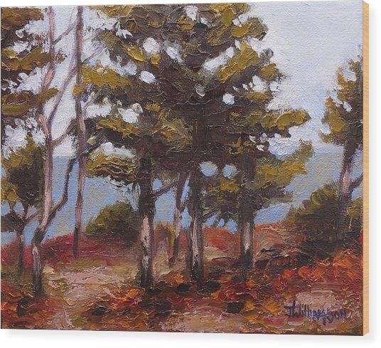 Mountain Top Pines Wood Print