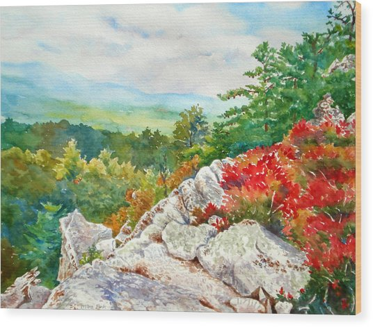 Mountain View From Rocky Cliff With Fall Colors Wood Print by Mira Fink