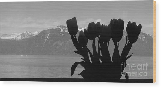Mountains And Tulips Wood Print by Laura  Wong-Rose