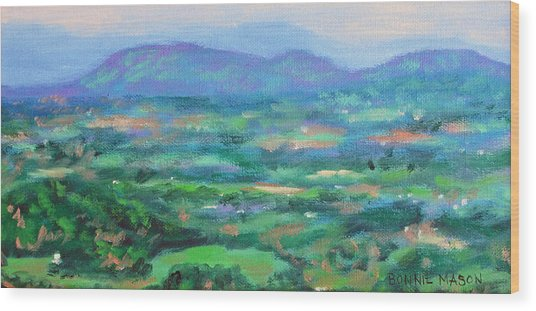 Mountains And Valleys- Summertime Along The Blue Ridge Parkway Wood Print
