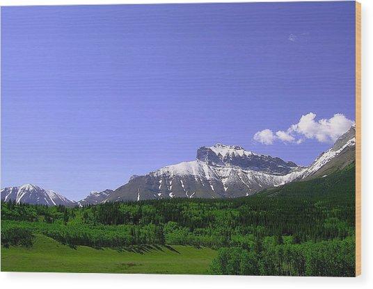Mountains Crowsnest Wood Print by Mavis Reid Nugent