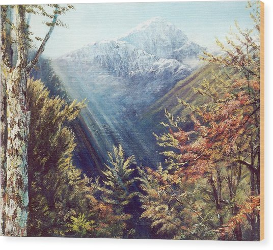 Mountains In The Mist Wood Print by Peter Jean Caley