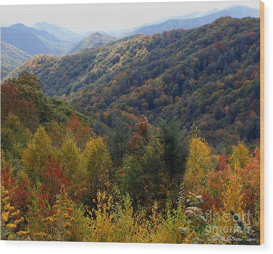 Mountains Leaves Wood Print