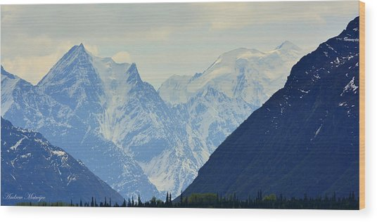 Mountains Near Matanuska Glacier Wood Print