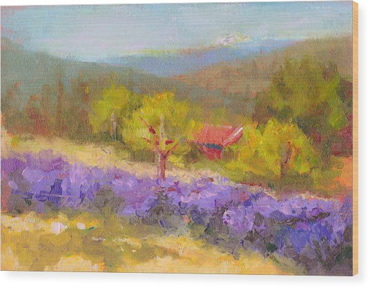 Mountainside Lavender   Wood Print