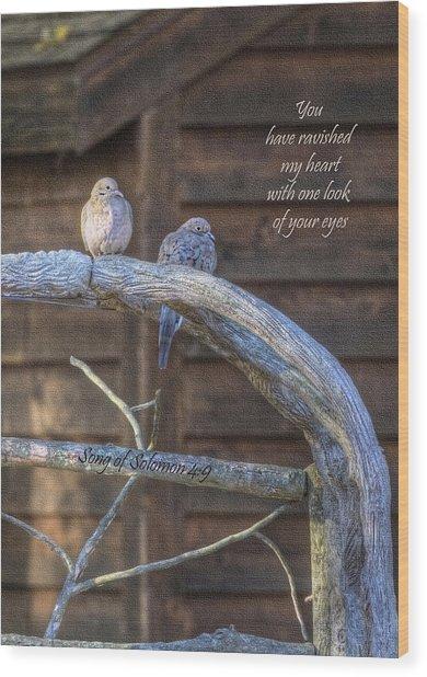 Mourning Doves Wood Print by Cheryl Birkhead