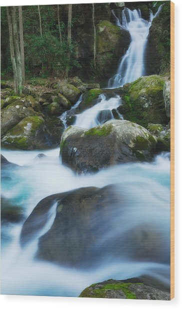 Mouse Creek Falls In Colour Wood Print