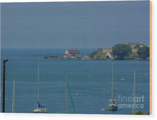 Mouth Of The Niagara River Wood Print