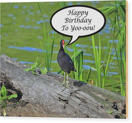 Mouthy Moorhen Birthday Card Wood Print