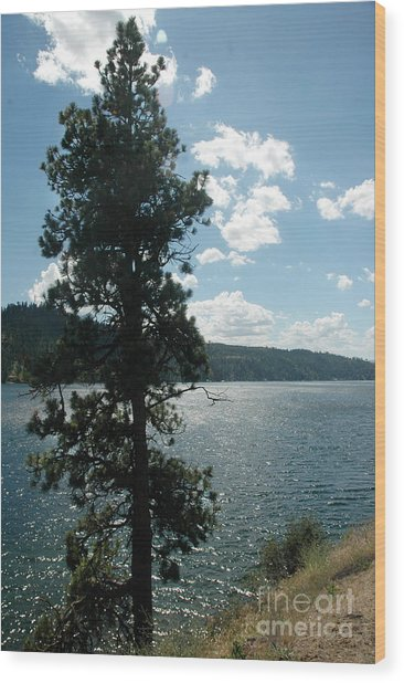 1012a Moyie Lake Bc Wood Print