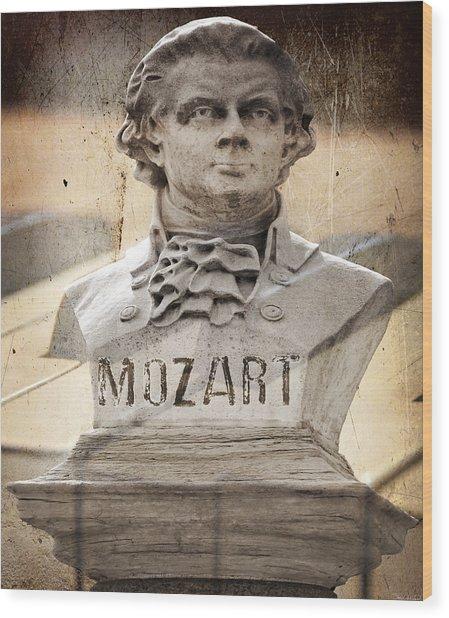Mozart Wood Print by Steven Michael