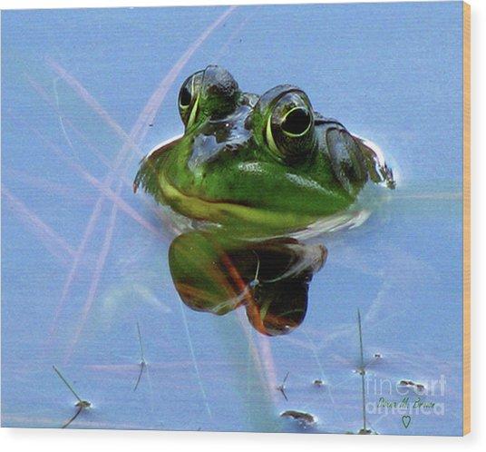 Mr. Frog Wood Print