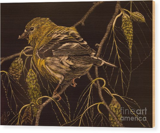 Mrs Goldfinch Wood Print