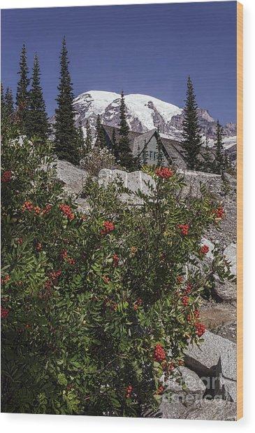Mt Ash At Mt Rainier Wood Print