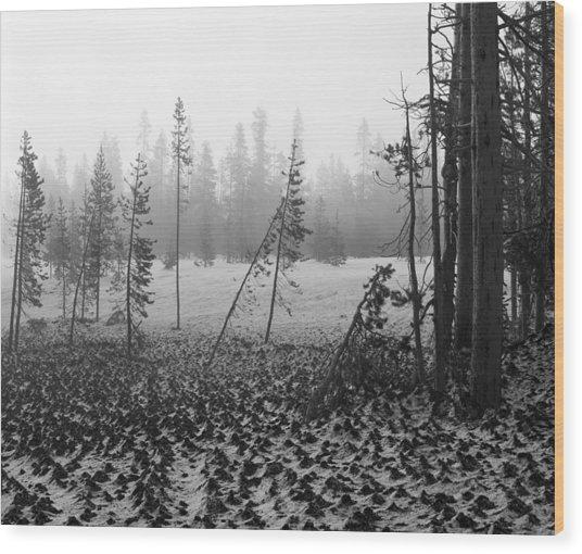 Mt Bachelor Road Wood Print