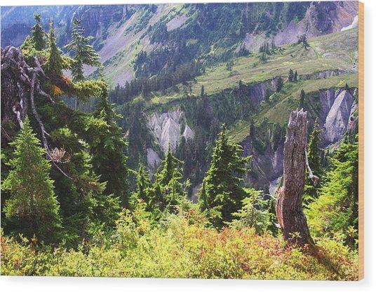 Mt. Baker Washington Wood Print