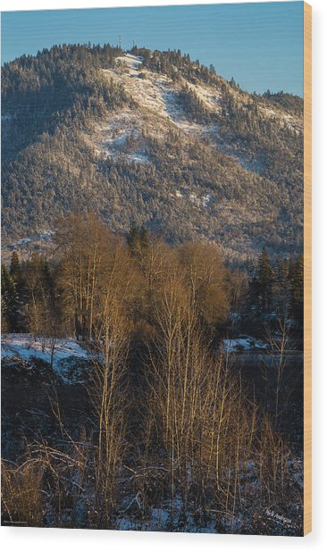 Mt Baldy Near Grants Pass Wood Print