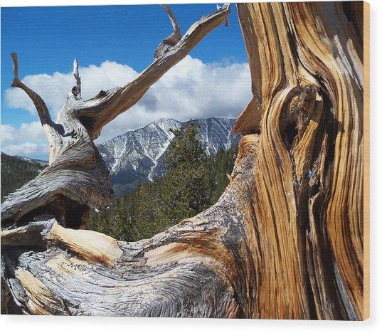 Mt. Charleston Thru A Tree Wood Print