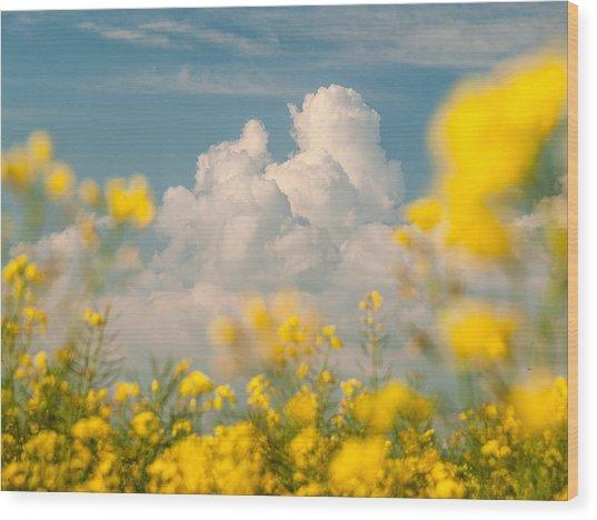 Mt Cloud Wood Print
