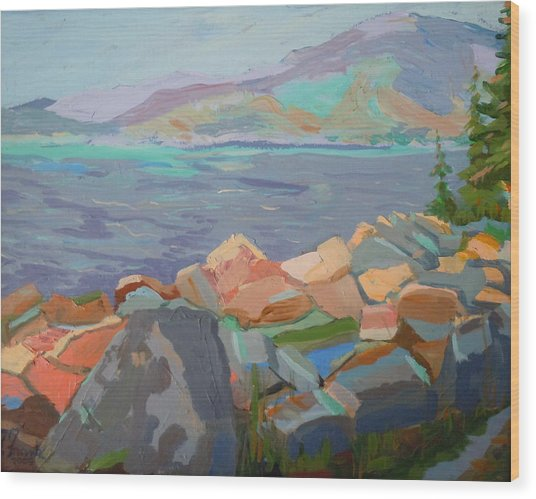 Mt. Desert From Schoodic Point Wood Print