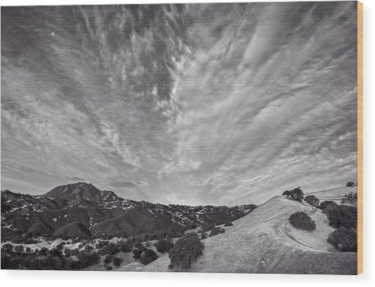Mt Diablo And Ridge Trail Wood Print