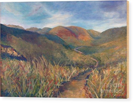 Mt. Diablo Hills Wood Print