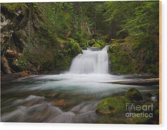 Mt. Hood Cascade In Summer Wood Print by Jackie Follett