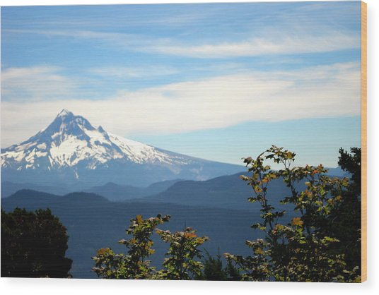 Mt. Hood View From Sherrard Point Wood Print by Lizbeth Bostrom