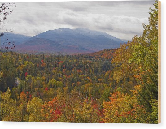 Mt Jo Wright Algonquin Wood Print