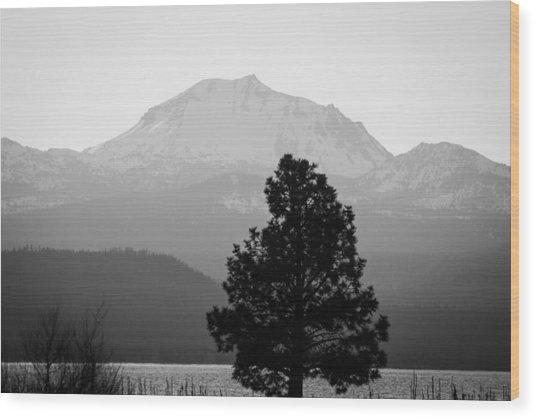 Mt. Lassen With Tree Wood Print