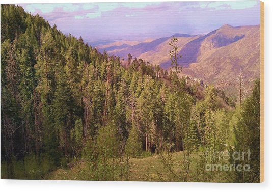 Mt. Lemmon Vista Wood Print