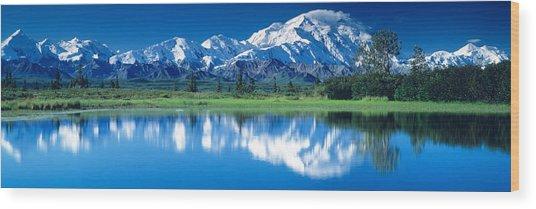 Mt Mckinley And Wonder Lake Denali Wood Print