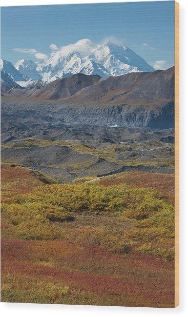 Mt Mckinley, Tallest Peak In North Wood Print