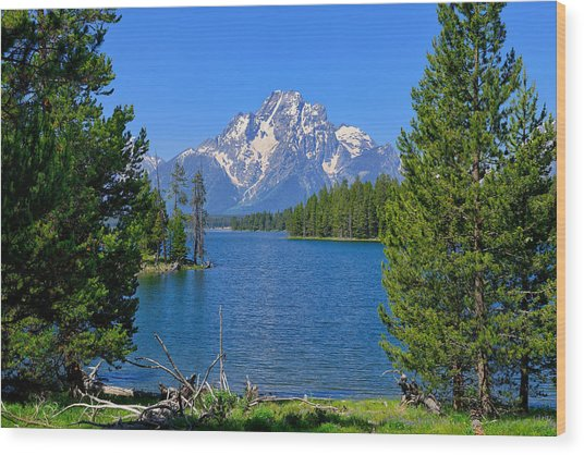 Mt Moran At Half Moon Bay Wood Print