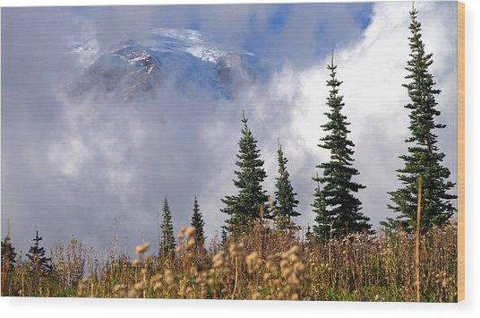 Mt Rainier Cloud Meadow Wood Print