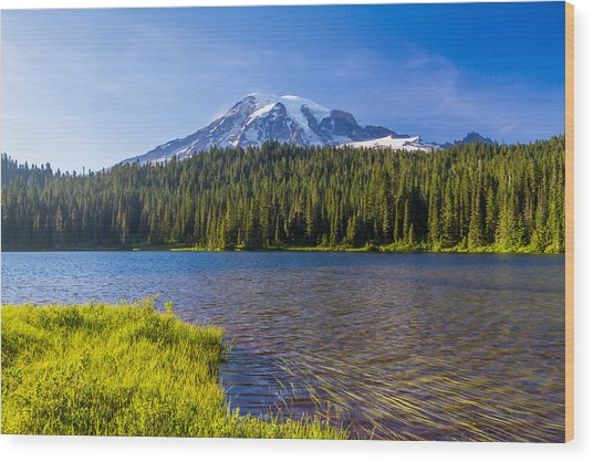 Mt Rainier Viewpoint Wood Print