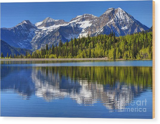 Mt. Timpanogos Reflected In Silver Flat Reservoir - Utah Wood Print