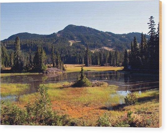 Mt Washington Autumn Wood Print