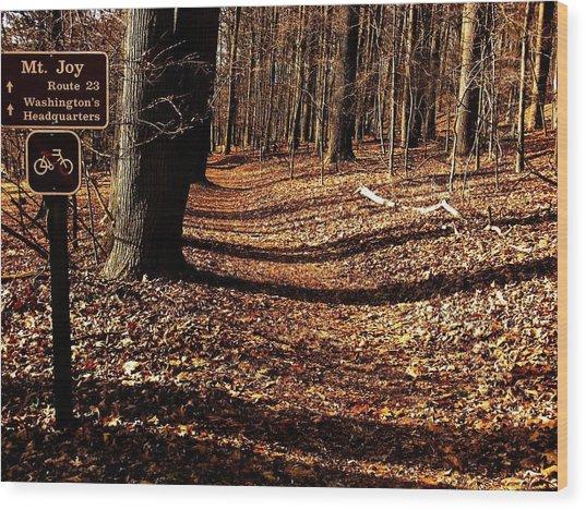 Mt.joy Wood Print by Christian Rooney