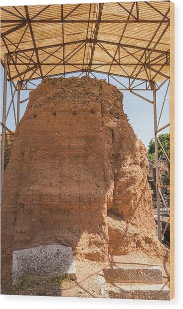 Mud-brick Wall Protection Wood Print by David Parker/science Photo Library