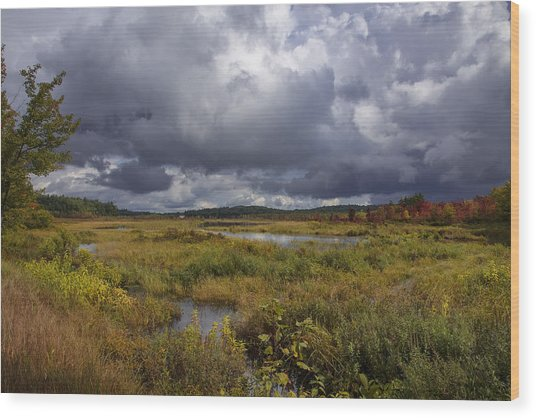 Mud Pond Clouds Wood Print