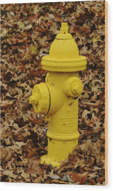 Mueller Fire Hydrant Wood Print