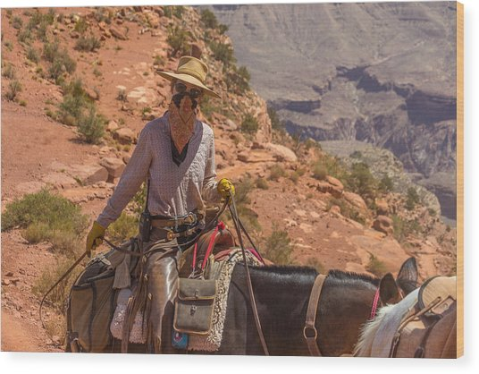Mule Wrangler On The South Kaibab Trail Wood Print