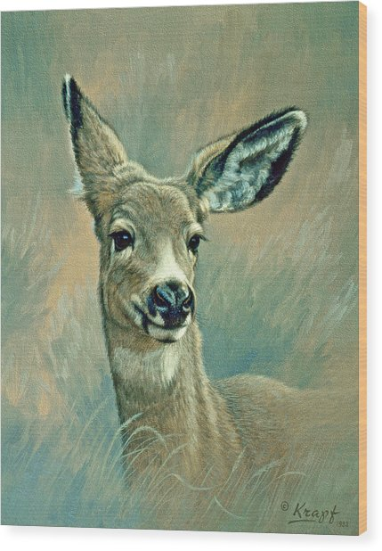 Muley Fawn At Six Months Wood Print