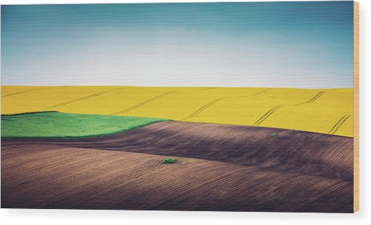Multi Colored Panoramic Spring Field Wood Print by Borchee