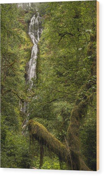 Munson Creek Falls Wood Print