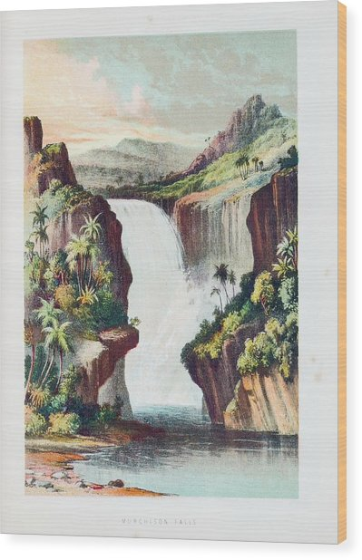 Murchison Falls On The Shire River Wood Print