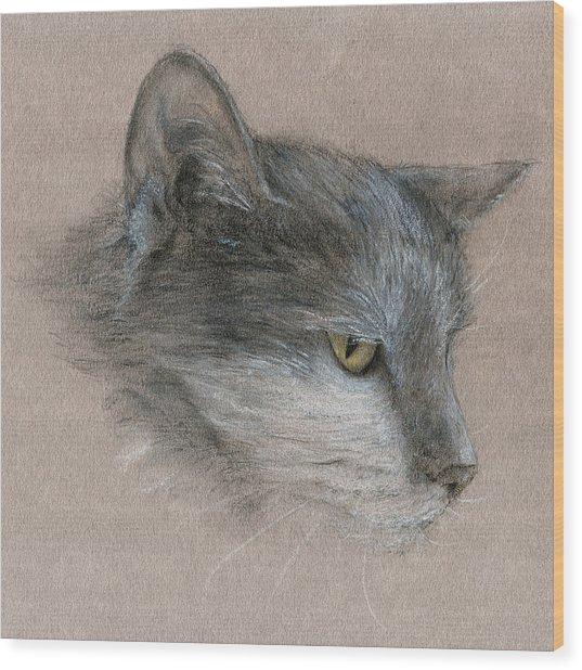 Murray The Cat Wood Print